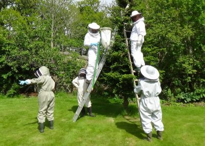 The Tarland Bee Group - capturin swarms