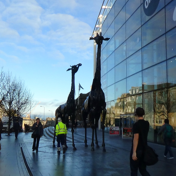 GiraffeandbabyLeith_Walk_Edinburgh
